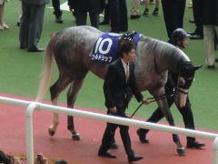 2013年6月 関西の旅 第2日 阪神競馬場