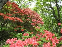 新緑とつつじが鮮やかな赤城山