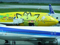 やはり那覇空港と言えば飛行機です。