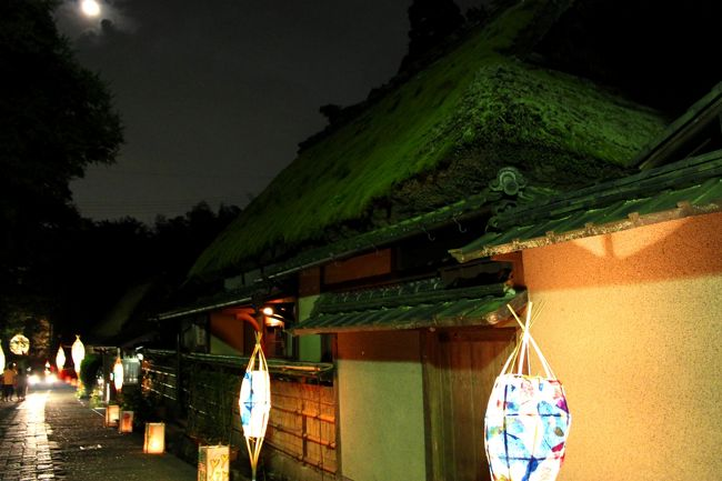 愛宕古道街道 奥嵯峨野。<br /><br />京都の夜は蒸し暑い...大阪もだけどね(笑)<br />蒸し暑さにヘロヘロしつつ<br />嵐山 釈迦堂から鳥居本あたりまで夜散歩♪<br />遅くに着いたので人は少なめでした〜<br /><br />愛宕古道街道灯し(あたごふるみちかいどうとぼし)<br />念仏寺の千灯供養と地域の地蔵盆に合わせて行われます。<br />手作りの行燈が一の鳥居から祇王寺あたり迄<br />柔らかい灯りで夜道を照らします。<br /><br />愛宕古道街道灯し2012 - さがとりいもとインフォ<br />http://sagatoriimoto.info/atago/2012/