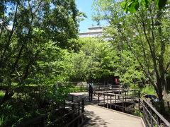 2013/5 赤羽自然観察公園 散歩