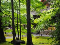 仲良しトラベラーさんと深緑の洛北を散策~大原三千院・来迎院、岩倉実相院、府立植物園~