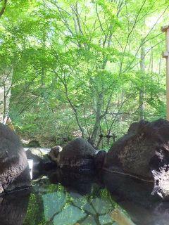 深緑の季節に行く奥飛騨 (2) 【 新穂高温泉 山の旅舎 中尾平 】