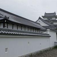 関宿城博物館・鈴木貫太郎記念館見学とひまわりまつり