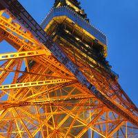 東京タワー登頂 夜景散策