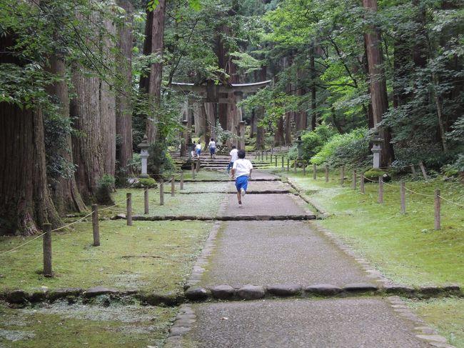 司馬遼太郎の街道をゆくのなかでも読み飽きない「越前の諸道」の一部でもたどれないかとおもっていましたが、勝山に宿泊して平泉寺や永平寺を訪れ念願を少し遂げることができました。