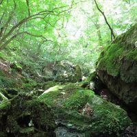 """御岳山へ ~ """"武蔵御嶽神社参拝"""" と """"ロックガーデンハイキング"""""""
