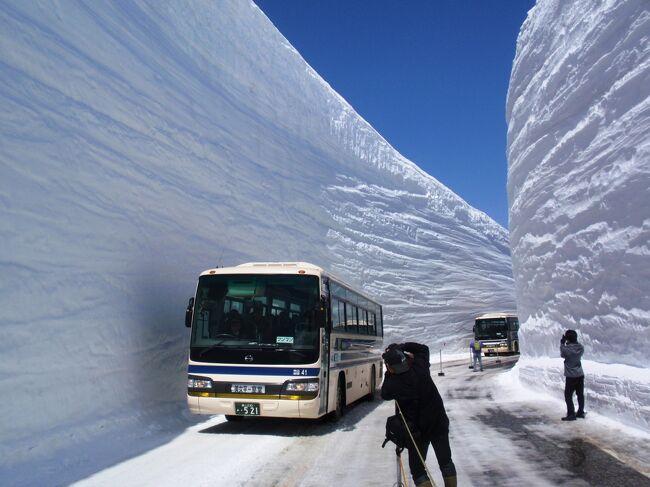 4/21(木)〜4/22(金)で立山黒部の雪の大谷を見に行くことにしました。<br /><br />開通5日目の本日が初めて快晴となったそうで翌日は曇りでしたのでまさに最高の天気だったみたいです。<br /><br />今年は大雪の影響もあり、雪の大谷の壁の高さは17mとのことです。<br />2006年の記録的積雪の時にも行きましたが今回はそれを上回る量なんで16日の開通から早いうちでと考えGW前に予定しました。<br /><br />■過去の積雪(4月下旬の開通当初です)<br />2011年…17m<br />2009年…15m<br />2008年…16m<br />2007年…14m<br />2006年…19m<br />2005年…15m<br />2004年…16m<br />2003年…17m <br /><br />ポスターのような最高の天気で気温は0℃でしたが風も無く、17mの雪も真っ白で素晴らしい景色でありました。<br />中国やヨーロッパ系と思われる外国人観光客も団体で来ており、地震で落ちこんだ感覚はここでは感じませんでした。<br /><br />平日だったんで人もそんなに混んでなく3時間室堂に滞在し、雪の遊歩道や、雪の大谷と日野セレガの新旧のバスが多数通過する様子を撮影しました。<br /><br />手段は費用面で飛行機+宿+レンタカー使用にしました。<br />これは実走した場合より金額面約6000円安いですが、それよりも時間短縮で日程も1日短縮できます。<br /><br />■費用<br /> 羽田空港⇔富山空港往復+宿泊 27525円<br /> レンタカー+ガソリン代約3000円<br /> 羽田までの高速代往復2800円+駐車場代3000円+ガソリン代3000円<br /><br />合計=39325円<br /><br />