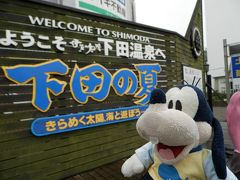 グーちゃん、臨時下田合宿へ行く!(下田お散歩編)