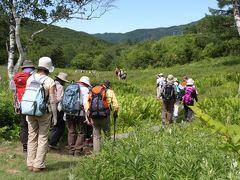 2013夏の花旅:志賀高原(その1)探勝歩道せせらぎコース