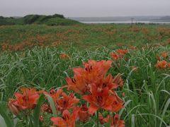初夏の北海道 スペシャル旅 4日目 小清水原生花園 知床観光船硫黄山コース