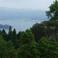 梅雨の舞鶴自然文化園あじさいと京都苔寺・桂離宮の旅