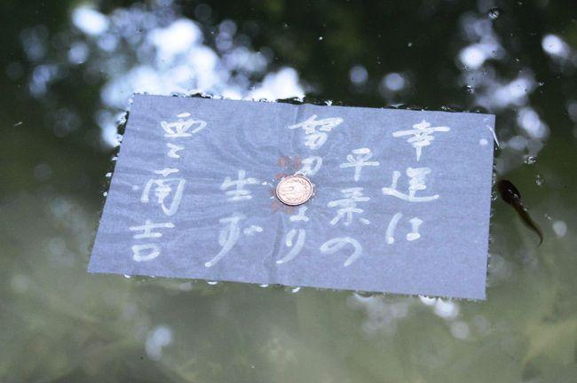 """皆生温泉に宿泊して、山陰(島根県&鳥取県)へのドライブを楽しむ。<br />総走行距離=820km。 <br />今回の旅の印象は、一言で言うと、「暑かった!」。  <br /><br />この旅行記は、島根県観光・松江市の「八重垣神社」と、<br />翌日訪れた「美保神社&美保関灯台」の旅行記です。<br /><br />出雲観光後、縁結びを願う人々が訪れる「八重垣神社」へ。 <br />ここは、着物姿の縁結び娘が境内をくまなく案内(無料)してくれます。 <br />平成26年3月末(12月30日~1月5日を除く)までの毎日、<br />1日5回(10時・11時・13時・14時・15時)、約30分間のガイドです。<br />しかし、訪れたのが、16時を過ぎていたので、<br />残念ながら、縁結び娘には会えなかった。<br /><br />・八重垣神社<br /> スサノオノミコトが、ヤマタノオロチ退治の後、イナタヒメと居を構えるにあたって詠んだ、日本最古の短歌とも言われる古歌「八雲立つ出雲八重垣妻ごみに八重垣つくるその八重垣を」に由来する神社。本殿から少し離れた裏手にある小さな森と、その中に静かに佇む「鏡の池」は、全国から訪れる人が絶えることがないパワースポットとして定着している。和紙の中央に硬貨を乗せ、鏡の池に浮かべて、その沈み具合で縁の遅速を占う""""縁占い""""が若いカップルに人気です。 【しまね観光ナビより】<br /><br />・美保関灯台<br /> 島根半島東端の地蔵崎の先端に、国の有形登録文化財に指定されている灯台。明治31年に完成した。地蔵崎付近は大山隠岐国立公園に含まれる景勝の地。灯台は海抜73mの岩上にあって高さ14m。【松江観光協会美保関町支部のページより】<br /><br />・美保神社 <br /> 事代主神系えびす社3千余社の総本社である(蛭子神系のえびす社の総本社は西宮神社)。えびす神としての商売繁盛の神徳のほか、漁業・海運の神、田の虫除けの神として信仰を集める。また、「鳴り物」の神様として楽器の奉納も多い。【ウィキペディアより】<br /><br />・だんだん(松江観光公式サイト)のHP<br />   http://www.kankou-matsue.jp/<br />"""