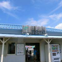 木更津から横須賀まで。『休日お出かけパス』で充実 日帰り鉄道の旅