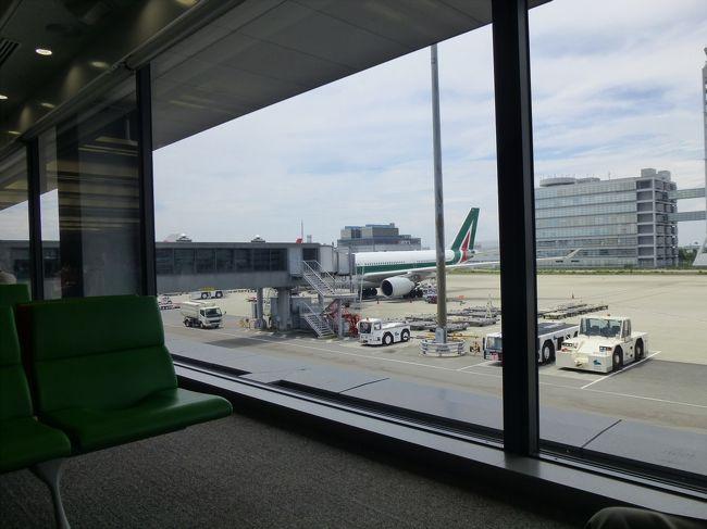 2013年7月14日~21日<br />アリタリア-イタリア航空ビジネスクラス利用!華麗なるクロアチア・スロベニア・モンテネグロ8日間の添乗員付きのツアーです(参加は20人)。<br />*アリタリア航空は2015年10月24日で関空便を運休<br /><br />クロアチアのドブロヴニクに行きたくていろいろなツアー会社を参考にしましたが、ビジネスクラス利用で旅行代金もそれほど高くなかったので、このツアーにしました。<br /><br />今日は長い一日です!<br />1泊目からホテルのベッドで寝れるということですが、ホテル到着は深夜になります。<br /><br />1日目<br /> 13:25 関西国際空港発アリタリア航空にてローマへ<br /> 19:35 ローマ着 イタリア入国<br /> 20:55 ローマ発 国内線にてトリエステへ<br /> 22:15 トリエステ着<br /> 22.45 トリエステ発バスにて国境をこえスロベニアのブレッドへ<br /> 01:30 ブレッド着後ホテルヘ