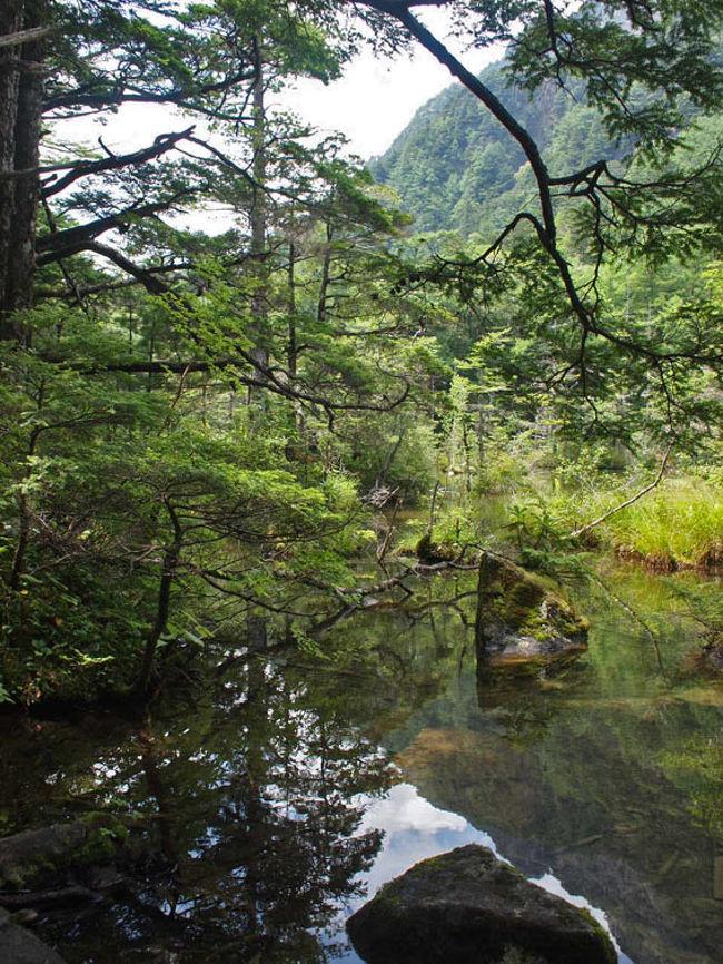 7月上旬に、初めて上高地へ行き、大正池から河童橋まで歩きました。その時は、湿度が高くて、蒸し暑かったのですが、8月に入ると涼しい風が吹いてきて、快適でした。東京は連日の猛暑で、35度を超える日が続いているので、ほっとひと息付くことが出来ました。<br />明神池はどんなところだろうと思ってワクワクしながら歩いてきましたが、お昼前だったため、人もそれ程多くなくて、静かな明神池を満喫することが出来ました。神降地の名の通り、明神は古来から「神河内徳郷」と呼ばれ、上高地の始まりの地だそうです。<br />明神岳(2931m)は、曾て「穂高大明神が鎮座する山々」という意味で、穂高連峰全体を指す言葉として使われてきました。トンネルが開通していない昔は、徳本峠を越えて、入山していて、穂高神社奥宮に祀られた明神は 、峠を越えた到着点として、この地を見た人々は神々しく、崇拝したそうです。「上高地」は、現在の明神を指して使われたとも言われています。現在の明神岳は、前穂高岳から張り出した尾根の一つを指しますが、麓の明神には、穂高神社奥宮が祀られ、現在も多くの人に信仰されています。<br />上高地・大正池〜河童橋編は、http://4travel.jp/taraveler/adoredune/album/10793331/ にアップしてあります。<br />