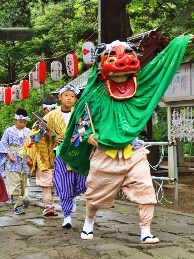 長者山新羅神社(ちょうじゃやましんらじんじゃ)は、青森県八戸市の長者山山上に鎮座する神社である。重要無形民俗文化財の八戸三社大祭や八戸のえんぶりで著名。社格は旧県社。素佐嗚尊と新羅三郎源義光命を主祭神に、愛宕権現や稲荷大神を相殿に祀る。歴史長者山には古くから様々な祭祀が行われていたらしく、八戸藩初代藩主南部直房によって虚空蔵菩薩が勧請され「祇園」と俗称された堂祠を前身とし、新羅神社としては延宝6年(1678年)に2代藩主直政が藩家の守護と領内の五穀豊穰と領民の安穏、無病息災を祈念する祈願所として山上に南部氏の遠祖である新羅三郎義光命(源義光)を勧請、「三社堂」または「虚空蔵堂」と号したのに創まる。以後、八戸藩の総鎭守として歴代藩主から尊崇され、また造営事業等は藩直営で行わる例とされた。元禄7年(1694年)に社殿の改築がなされたが、文政10年(1827年)にも8代藩主信真によって再改築が行われており(現社殿)、この時には桜の馬場を開設して例祭に打毬を奉納するようになった。明治初期の神仏分離に伴い、明治2年(1869年)に社号を「新羅神社」と改めて郷社に列し、同14年の明治天皇の東北巡幸に際しては行幸があり騎馬打毬が天覧に供された。後に県社へ昇格し、昭和51年(1976年)に現社号である「長者山新羅神社」と改称した。例祭8月2日に斎行され、例祭後には境内の桜の馬場で打毬の奉納が行われる。打毬は騎馬で行う「騎馬打毬」と馬を用いない「徒打毬(かちだきゅう)」の2種があり、文政の社殿改築の落成奉祝行事として藩主信真が奉納した事に創まるといい、特に騎馬打毬は南部家の家流である加賀美(かがみ)流馬術の訓練として当時江戸で行われていた打毬を取り入れ、武芸奨励の目的で伝承されたものという。騎馬打毬では、騎馬の競技者が4騎ずつ紅白2組に別れ、地上に置かれた紅白各4個の毬を先端に網のついた毬杖(まりづえ)で掬って自陣の毬門に投げ込み、4個全部を早く毬門に入れた組を勝ちとする。また鞠の投入は「見定め奉行」が判定し、白毬が入れば太鼓が、紅毬が入れば鐘が鳴らされる。騎馬打毬は現在宮内庁と山形県でも行われているが、当神社のものは「加賀美流騎馬打毬」として昭和47年3月15日に県無形民俗文化財に指定された現本殿と拝殿は文政9年に着工、翌年に竣工したもので、本殿は桁行3間、梁間2間の入母屋造平入の身舎に3間の向拝(こうはい)を付ける構造、正面扉や組物、向拝の柱廻り等に華麗な彩色文様が施されている。拝殿は桁行5間、梁間3間平入の入母屋造に1間の向拝を付けるが、梁間(奥行き)が3間の拝殿は珍しく、市内では櫛引八幡宮と当神社に見るだけである。本殿、拝殿ともに細部の彫刻等に江戸時代の神社建築の特徴がよく残される事から平成3年(1991年)3月13日に青森県の重宝に指定された。(フリー百科事典『ウィキペディア(Wikipedia)』より引用)八戸三社大祭(はちのへさんしゃたいさい)は、毎年7月31日から8月4日に青森県八戸市で行われる祭である。 7月31日が前夜祭、1日が「お通り」、2日が「中日」、3日が「お還り」である。「三社」とは、八戸市内の龗(おがみ)神社(法霊神社)・長者山新羅神社・神明宮のことで、三社の神輿行列と市内各町を中心とした組の20数台の華麗な人形山車が神社の氏子として市内を巡行する。 期間中は105万から110万人の観光客が訪れる。前夜祭(7月31日) - 八戸市中心街と八戸市庁前に山車が集結し、一斉にお囃子を演ずる。•お通り(8月1日) - 神輿や神楽、山車などの合同運行。•中日(8月2日) - 山車の夜間合同運行2004年2月6日に、「八戸三社大祭の山車行事」として重要無形民俗文化財に指定された。祭りの大きな特徴は人形がせり上がり、左右の大きく広がる仕掛けを持つ豪華な山車にある。当初は1体の人形を乗せる程度だったものが、明治の中頃より物語を表現する山車に変化し、昭和50年代頃から徐々に仕掛けが施されるようになった。近年では煙が吹き上がるなどの仕掛けもある。山車は町内ごとに製作されるが、これは明治時代に大澤多門が発案したものと言われている。(フリー百科事典『ウィキペディア(Wikipedia)』より引用)八戸三社大祭については・・http://www.city.hachinohe.aomori.jp/kanko/festival/sansya/