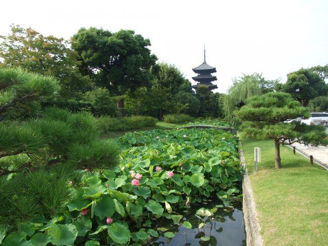 今回の旅行は奈良春日大社周辺と飛鳥向原寺周辺と京都大原周辺を巡る2泊3日の旅。<br />12年前のずっと下書きの物を整理してアップしました。