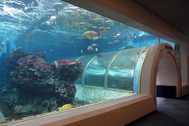 古川市場のっけ丼 - 青森魚菜センター<br />http://www.aomori-ichiba.com/nokkedon/<br /><br />浅虫足湯めぐり<br />http://a-wadai.com/w41.html<br /><br />浅虫水族館<br />http://www.asamushi-aqua.com/<br /><br />あおもり旬味館<br />http://www.jre-abc.com/syunmikan/<br /><br />A-FACTORY<br />http://www.jre-abc.com/a-factory/index.html<br /><br />