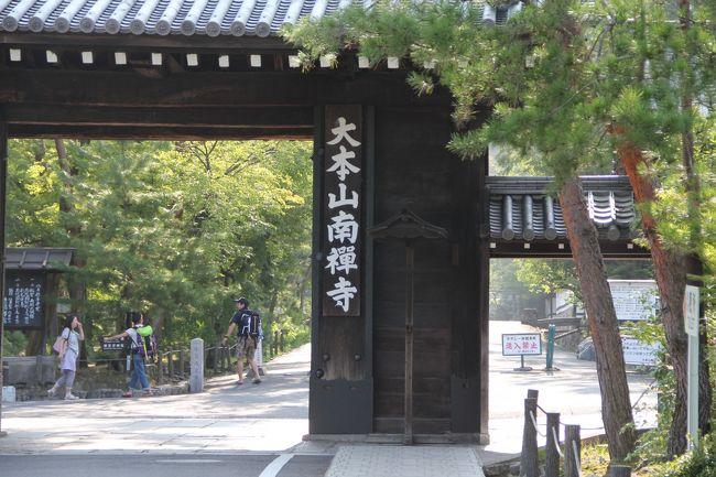 8月13日(火)の夕方に京都駅近くにホテルを予約してあったので一泊し、14日(水)にチェックアウトし地下鉄にて京都駅より烏丸御池にて乗り換え、蹴上で下車し、南禅寺へ向かいました。南禅寺は秋の紅葉の時期が一番という事らしいですが、私は今回の夏の訪れに訪ねたのが初めてでした。<br />南禅寺から平安神宮まで散策し、そこからまた少し戻り知恩院の手前で青蓮院(しょうれんいん)門跡を訪ねました。此処は拝観料¥500、お茶代¥500でした。しかし、これが良かったのでした!!良い佇まいの建物で、庭もまた手入れされていまして、心静かに御もてなしを受けました。<br />知恩院は、山門前の階段での休憩眺望が良かったです。<br />しかし、私の体力が以前のようには持たなかったのでした。昼食を摂り、コーヒーを飲みそこまでで精一杯の満足感で帰宅の途に着きました。