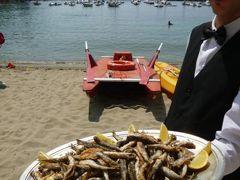 優雅な夏バカンス イタリア・東リビエラの旅♪ Vol115(第10日目昼) ☆セストリ・レヴァンテ:ランチはビーチを眺めながらイタリアンハンバーガー♪