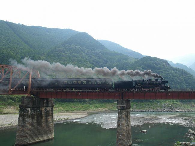 今回の旅はギリギリばかりの旅でした。<br /><br />お盆も熊本へ旅をしに行っておりました。前回、南阿蘇鉄道のトロッコにあと10分というところで乗車出来ずだったんで、そーだ、今回はSL人吉に乗ってみよー、な〜んて考えが甘い。SLは人気がある。当然、先まで予約が埋まっています。取れるわきゃないわな。<br /><br />おっちゃんが以前すごくお世話になった方のお墓参りに行きたいから一緒に行こうということで、八代のほうへ行くことになっていました。これは、川沿いからSLを観なきゃとおっちゃんに了解を得て、SL運行日に八代をぶつけてみました。<br /><br />一番近そうなのが坂本駅。ここには16時にやってきます。しかしそれ以上何も調べず。とにかく車を走らせ、トイレ休憩で寄った道の駅にあった坂本町マップを見ていると、球磨川第一橋梁なんていうSL鑑賞ポイントがあるではないか。今知った。レジのお兄さんに聞くとココから10分ほどの所だということで、運を天に任せ車を走らせます。だって、鎌瀬駅には停車しませんから何時に鉄橋を渡るかなんてわかりゃしないし。しかし、川の対岸にある線路をSLが走った様子がないのでこれは間に合うかも。<br /><br />ポイントに到着。近くの畑仕事をしているおじさんに尋ねてみると「15時50分に通るよ」と教えていただきました。よし、間に合った。車を停め歩いていると「もうすぐ来るよー」とおじさんが教えてくれます。「ええ〜、まだ何の準備もしてないし」と走ります。<br /><br />間に合ったとはいえ、SLがやってきてしまったので、撮影も動画も消化不良。でもよかった〜、観れて。<br /><br />と、ここから熊本へ帰るのですが、消化不良だったんで新八代駅で捕まえることにしました。SLは16時半です。自分たちも16時半くらいに着いたのですが出発時刻が書かれていないのですぐの出発でしょう。どのホームにいるかもわからないんでいるかいかいかすらわからねー。車を停めるところがなかったのでロータリーを一周すると煙を発見。まだいる。たまたま出て行った車がいたんで車を停めて外へ出ると、出発してしまった…。消化不良。<br /><br />本来、朝の熊本駅で観ようかと思っていたのですが、前日、遅くの到着だったんで起きたのが遅かったんですよねー。と、帰る日。ホテルはいつものJR九州ホテル熊本。そして部屋はまたまたステーションビューだったんで、バカはヒマがあると駅を眺めていたんです。すると煙が上がっているのが見えたのです。自分が滞在する日の運行状況しか頭になく、13日は乗れず。14日は運行なし。これだけしか頭にない。そーか、15日も運行日なのか。まだ9時。出発は9:44。シャワーを浴びてメイク前なのでチャッチャとメイクをし、10時チェックアウトなので若干の荷造りをし、ホームへ行きます。出発5分ほど前に到着し、ようやく撮影出来ました。<br /><br />