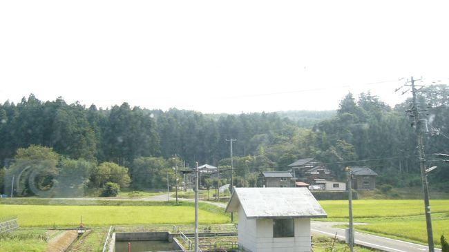 8月15日未明〜今日8月18日朝まで、家族の生家がある新潟県柏崎市(旧西山町)に行ってきました!!<br />東北道・北関道を途中、群馬県に入って最初のポイント・波志江PAでトイレ休憩後、高崎から関越道に入り、関越トンネルを抜けて新潟県へ。そこで見たものは・・・?<br /> 冬になれば銀世界となる山間部を下り、越後川口SAで朝食。山菜そばとライスにしました。<br /> まだ、目的地まで時間に余裕があったので、越後川口ICで関越道を降り、十日町市(旧川西町)・旧高柳町ののどかな田園風景を望みながら、柏崎市の中心部を抜け、ここからは日本海沿岸に沿ってドライブ!!<br />絶景といっていいくらい、今、写真撮影をしそびれた事を後悔しているほどです。<br /> 目的地に近づいてきましたが、まだ時間があるので、寺泊方面に向かって日本海沿岸を北上。<br /> そして、出雲崎の道の駅で、新潟県産コシヒカリを使用した塩アイスと安田町の牛乳を使用したシューアイスを味わいました。とてもおいしいですよ。<br />(写真は目的地で撮影したのどかな田園風景です。)<br /><br /> のんびり過ごした後、今日8月18日未明に帰途へ。今度はまっすぐ北陸道の西山ICに向かい、長岡から関越道に入り、再び越後川口SAへ。ここでは、ヤスダヨーグルトを味わいました。<br /> その後は行きと同様に、関越道を一路高崎に向けて走り、北関道を経て東北道の佐野SAへ。佐野ラーメンとレモン牛乳で朝食にしました。