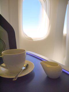 ブラジル(サンパウロ-成田間)スターアライアンス線に乗ってみる(昔、TAMブラジル航空がまだスタアラだった頃。ロンドン経由TAM/ANA)