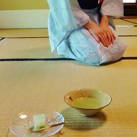 和歌山城の石垣を見て・・・茶室『紅松庵』でお殿様気分!