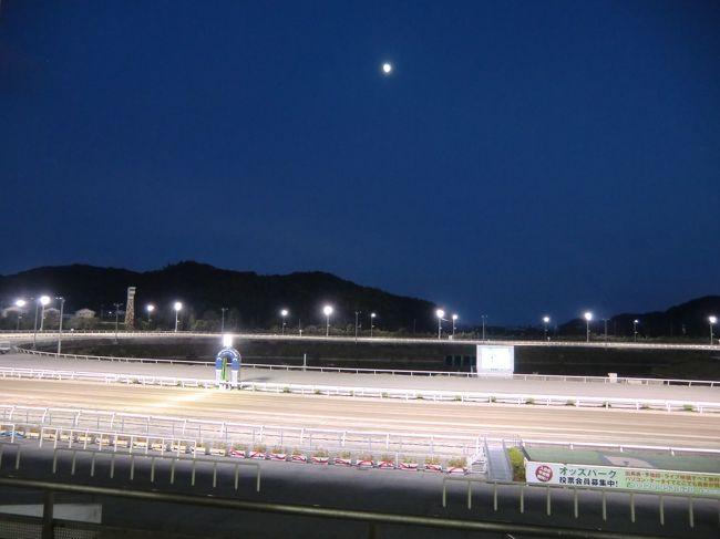 2013年8月 四国の旅 第3日②~第4日 高知競馬場、高知城