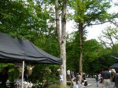 優雅な避暑 浅間高原♪ Vol3 ☆中軽井沢:ハルニレテラスで優雅なショッピング♪