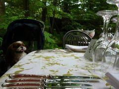 優雅な避暑 浅間高原♪ Vol6 ☆軽井沢:フランス料理「ル・ベルクール」 愛犬と一緒に優雅なランチ♪