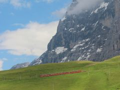 夏のスイス☆5大名峰と絶景列車の旅⑥♪シーニゲブラッテ高山植物園&ユングフラウヨッホ・スフィンクス展望台編