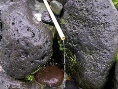 箱根路で路傍の湧水を巡る [2日目]