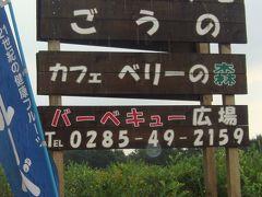 676 「ブルーベリーファームごうの」栃木県小山市飯田228