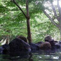 温泉めぐり東北の旅 2013 1日目 (花泉~花巻)