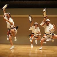 郡上八幡から京都経由、徳島へ。日本三大盆踊りの旅(四日目・完)〜阿波踊りの余韻の中、豊かな徳島藩25万石の歴史探索の街歩きです〜