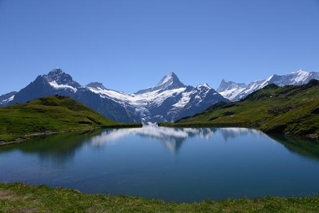 ハイキングを中心としたスイス旅行に行ってきました。<br />実はまともなハイキングは初めて。<br />11歳と7歳の娘2人を連れての家族4人でのハイキング。<br />子供連れの方の参考になればと思います。<br /><br /><br />■本コースの情報■<br />フィルストのゴンドラ駅と山上湖「バッハアルプゼー(Bachalpsee)」の往復コースです。ガイド本なんかには1時間とありますが、写真を撮ったり休憩したり、娘がぐずったり(笑)で行きは2時間かかりました。帰りは下りが多く1時間もかかりませんでした。<br /><br /><br />■他のコースの紹介■<br />・アイガーグレッチャー ⇒ クライネシャイデック<br /> http://4travel.jp/traveler/nagabuchikai/album/10804037/<br /><br />・ハイジハウス ⇔ ハイジヒュッテ<br /> http://4travel.jp/traveler/nagabuchikai/album/10807787/ <br /><br />・スネガ ⇔ グリンジゼー<br /> http://4travel.jp/traveler/nagabuchikai/album/10808026/