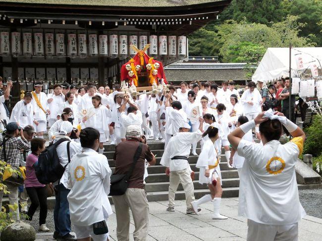 2年ぶりに松尾大社の八朔祭に行ってきました。<br />女性が担ぐ神輿で有名ですが、この日は奉納相撲を兼ねた京都府の中学校相撲大会が開催されます。<br />心配された天候も何とかもって、曇り空のなかですが女性たちが大活躍でした。