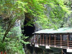 「秋芳洞」に「萩」に「山口」に・・・山口県をうろうろ、自然と文化に触れる旅をしてきました。