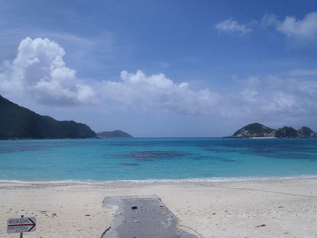 年に一度のダイビング旅行。<br />2013年は沖縄、慶良間の渡嘉敷島に決定~~<br /><br />前半2泊はシーフレンドさんに泊まってダイビングを満喫し、<br />後半2泊はケラマテラスさんに泊まってリゾート気分を味わう予定。<br /><br />しかし、台風15号通過後で、海は大丈夫なのか?と思いつつ行ってきました。・・結果、あんまり大丈夫じゃなかったカモ。