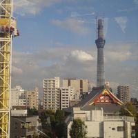 東京旅行 花やしき と 日生劇場へ!! 【2010年11月20日~2010年11月21日】