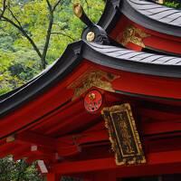 ロマンスカーで箱根へ【2】~初秋の仙石高原と元箱根~