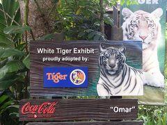 2013年9月☆久し振り過ぎるシンガポール旅行③シンガポール動物園編カペラシンガポール泊