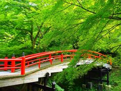 (思いがけず)秋近づく上州・伊香保を巡る旅【1】~深緑に包まれた河鹿橋と上州の名湯・伊香保温泉そぞろ歩き~