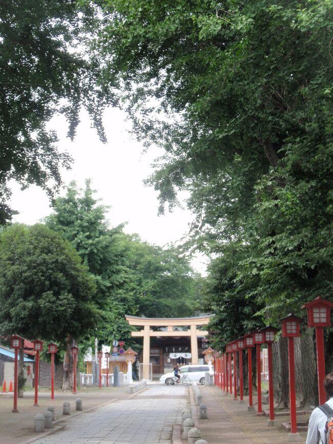 栃木県に入り、小山城を中心に栄えた小山宿から、それに続く新田宿を経て小金井宿へと歩いた。