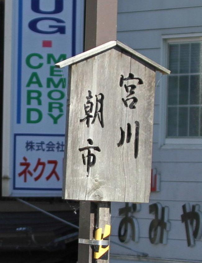 """飛騨高山の名物「宮川朝市」を見学しました。日本三大朝市のひとつとも言われ、高山市を代表する観光名所です。(石川県の輪島朝市、千葉県の勝浦朝市とここです。朝市といえば""""おばあさん方々""""のイメージがありますが、結構若い方々の売り子もいました。朝市の道路反対側の商店街も、市場の便乗商法にのり、大忙しでした。"""