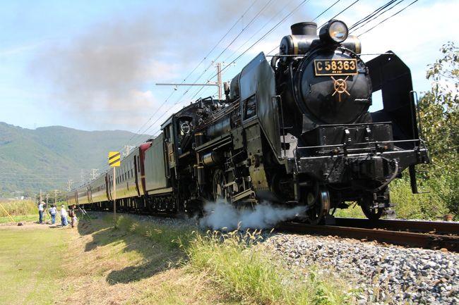 二日目<br />埼玉、秩父まで来たので、都心から一番近い蒸気機関車として<br />有名な秩父路のSL「パレオエクスプレス」を<br />一度見てみたいと、長瀞駅に向かいます。<br /><br />AM9:30 赤谷温泉 小鹿荘を出発<br />AM10:00 長瀞駅到着!<br /><br />少し早いので、熊谷方面に車を走らせます。<br />途中、寄居駅手前で沿線にカメラマンが屯している所を発見!<br />きっと此処は撮影ポイントに違いない・・・<br />駐車スペースを見つけ、線路脇で待機することにしました。<br /><br />以前、大井川鉄道でSLに乗る機会がありましたが、<br />乗車してしまうと電車と同じでSLに乗っている実感が無く、<br />今回は、走っているSLの姿を、是非見たくて長瀞に来た次第です。<br /><br /><br />(参考 パレオエクスプレス)<br />http://www.chichibu-railway.co.jp/paleo/<br /><br /><br />・巾着田旅行記はこちらから<br />http://4travel.jp/traveler/inakurokawa/album/10818637<br /><br />・長瀞渓谷旅行記はこちらから<br />http://4travel.jp/traveler/inakurokawa/album/10819607/