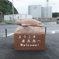 2013 念願の屋久島へ【その2】屋久島に上陸