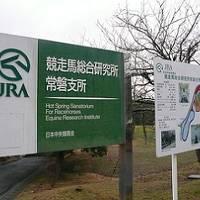 【福島:いわき】 馬の温泉 ~ JRA競走馬総合研究所常磐支所